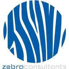 ZEBRA Consultants Ltd